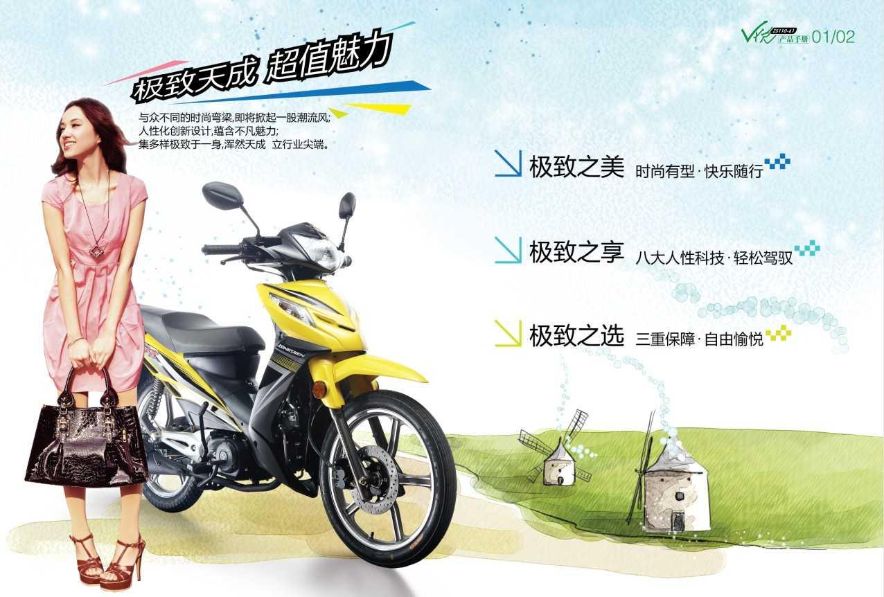 V悦ZS110-61图解(6张)