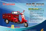 福星龙2008ZS110ZH-JX图解(2张)