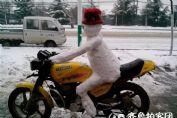 牛呆了!雪人竟会骑摩托车