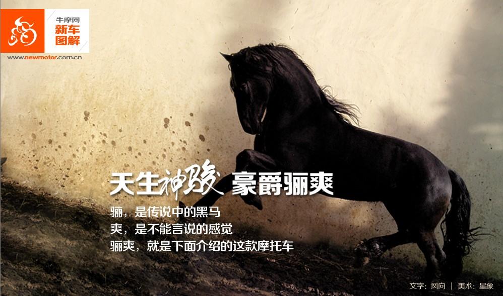 骊爽HJ125K-5新车图解(19张)