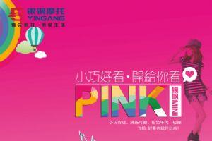 银钢mini粉红色海报