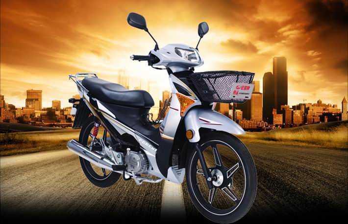 轻骑KR锋威QM110-3G