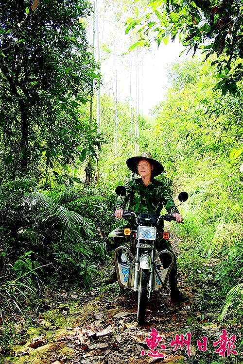 巡山员靠骑摩托车守山护林