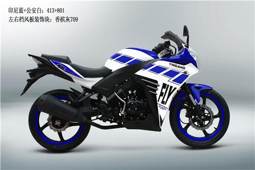 """极速""""飞""""车银钢飞YGR250R荣耀问世"""
