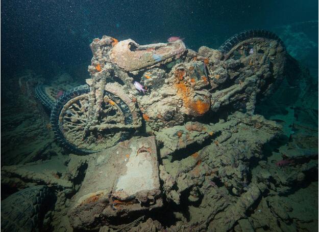 英国二战沉船现身红海海底仍保留军用摩托车