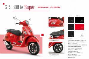 GTS 300 ie Super图解(2张)