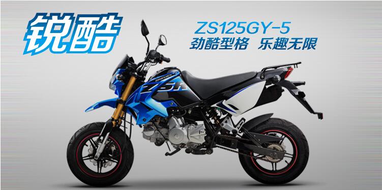 劲酷型格乐趣无限宗申锐酷ZS125GY-5