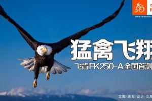飞肯FK250-A 猛禽飞翔 飞肯FK250-A全国首测