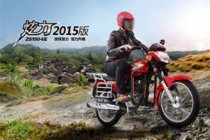 炫力2015'ZS150-6E(标准型)图解(9张)