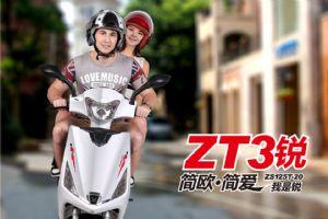 "ZT3""锐""ZS125T-20图解(10张)"