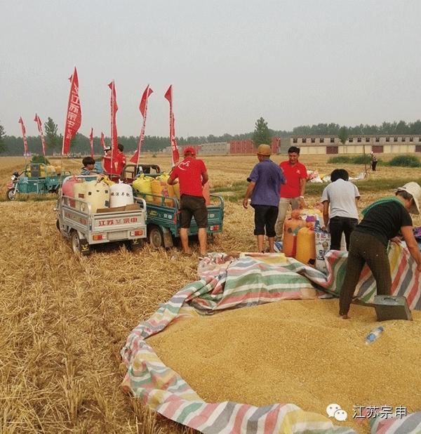 紧扣农村市场淮海控股领跑小型电动车市场