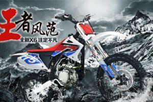 鑫源XY250GY-7图解