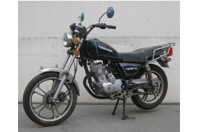 FS125-2C