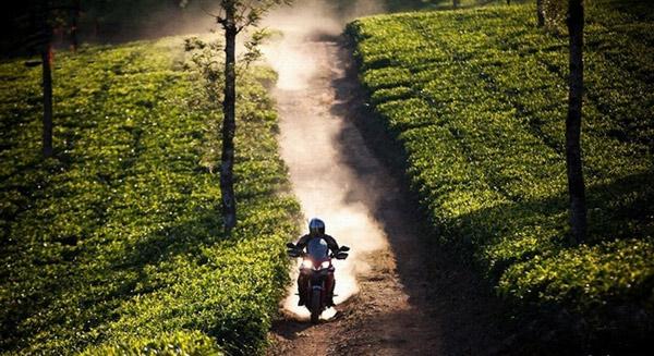 澳门威尼斯人在线娱乐平台,托起骑走异乡的梦想