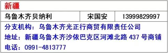 放肆抢-贝纳利小黄龙BJ250-15