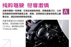 劲隆JL250GS-2-TBD 产品手册