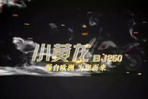 贝纳利小黄龙BJ250-15轮子版