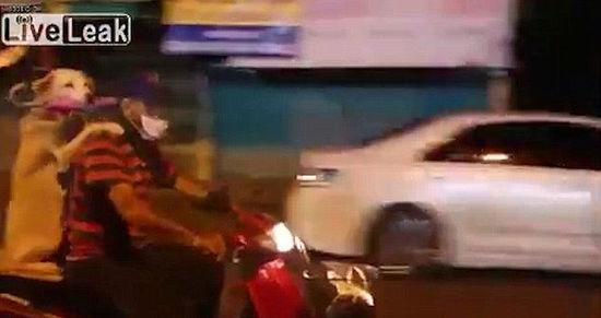 """泰国男子骑摩托搭载""""勾肩搭背""""狗乘客"""