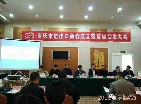 力帆集团当选首届重庆进出口商会会长单位
