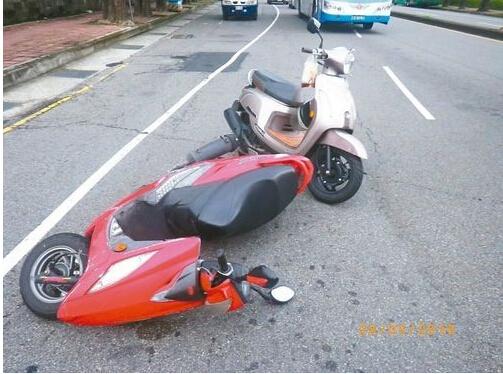 台湾:乌龟致车祸被逮捕网友:太奇葩