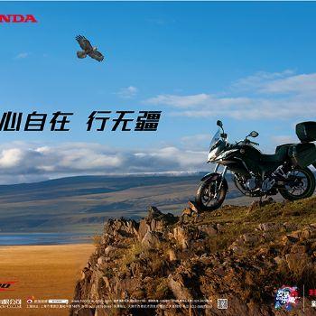 新大洲本田 CBF190X