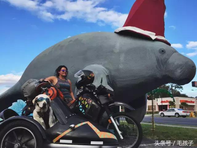 一人一狗一车6000公里骑上澳门永利娱乐场的网站就出发!