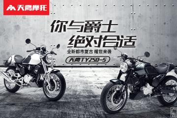 天鹰 爵士 TY250-5