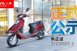电摩快讯|三雅新正道SY1000DT-3正式公示