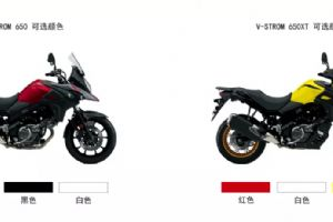 �木2020款DL650拉力