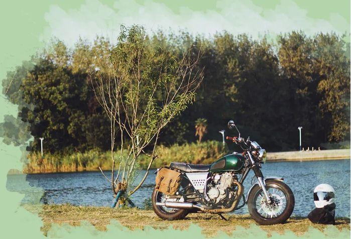 待到春暖花开,我想骑棍王见证花海