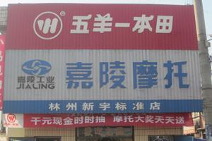 林州市新宇物化贸易有限公司