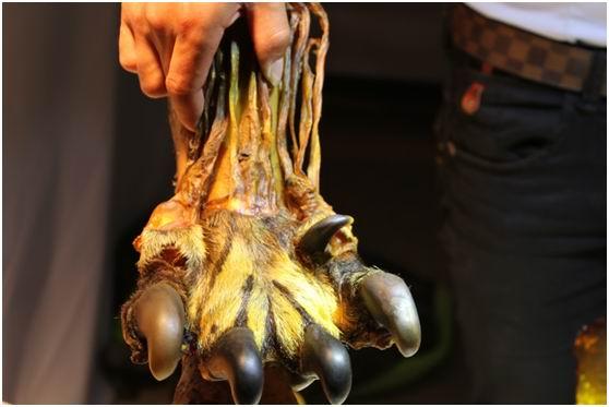 木雕虎爪腿图片