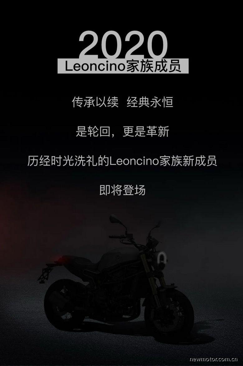 """幼狮800即将登场 """"会狮成都""""嘉年华"""